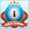 Sixth Online Bingo Summit Draws to a Close